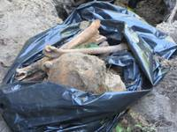Uzrok maisu ar munīciju un kauliem