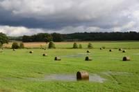 Pirmdien Latviju sasniegs spēcīgas lietavas, vietām nokrišņu daudzumam pārsniedzot pusi mēneša normas