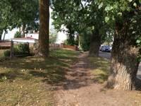 Plāno ietves izbūvi un koku stādīšanu Rojas ielā