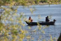 Liepājas ezerā aizliegta zušu specializētā zveja