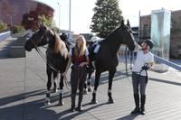Zirgi Liepājas satiksmē. Jātnieces pirmo reizi dodas apkārt Latvijai