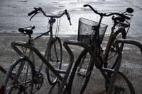 """Divriteni ziemas """"guļā"""" neliek. Sācies izaicinājums riteņbraucējiem """"Liepājas velo ziema 2020"""""""