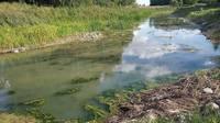Iedzīvotājus uztrauc Durbes upes atjaunošanas rezultāts