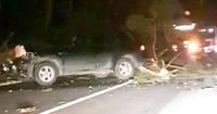 Video: Uz Klaipēdas šosejas koks uzgāzts automašīnai