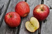 Ko pagatavot no āboliem