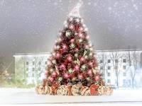 Uzsākta pilsētas rotāšana Ziemassvētkiem