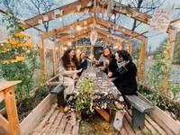 Notiks tiešsaistes darbnīcas Liepājas urbānā dārza veidošanai
