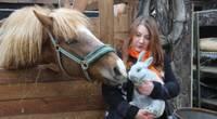 Lieldienu zaķim vajag ticēt! Kristīnes Sikorskas saimniecībā mīt 80 truši