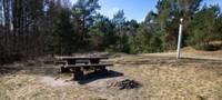 Pikniks pilsētā. Kur un kā to realizēt Liepājā?