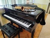 Nīcas Mūzikas skola saņem jaunus mūzikas instrumentus