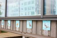 Dabas mājā var iepazīt putnus