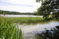 Ēriku Valdmani atrod noslīkušu Tīdu ezerā
