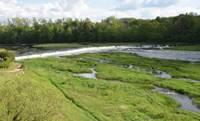 Arī par upēm ir jārūpējas. Tam, ka upes jātīra, piekrīt gan zinātnieki, gan dabas aizstāvji