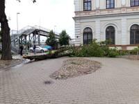 Saistībā ar vēja postījumiem VUGD visvairāk izsaukumu Liepājā