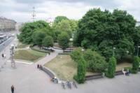 """Rožu laukums – Liepājas ērkšķainā sirds. Kāpēc pilsētas simbolu vasaras vidū """"rotā"""" kaili puķu kāti"""