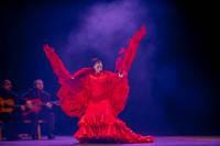 """""""Pasaule Lielajā dzintarā"""" aicina iepazīt karstasinīgo Andalūzijas flamenko"""