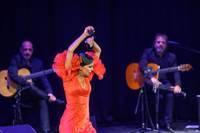Foto: Spāņu flamenko uzvedums piepilda skatītāju zāli un pieceļ kājās publiku