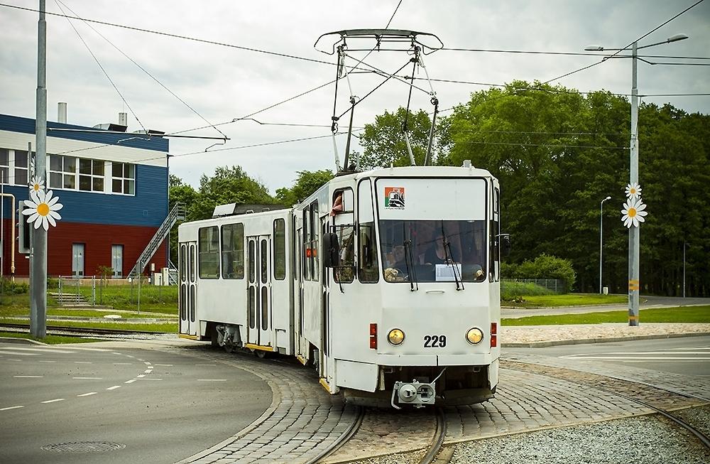 «Трамвай культуры» к Лиго