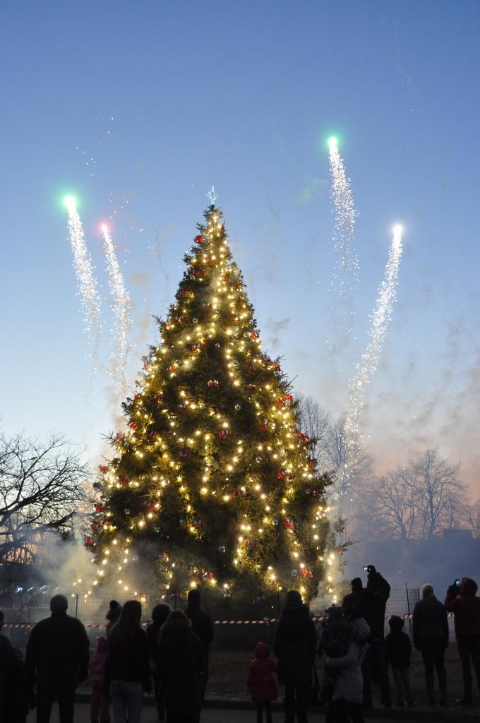 В преддверии праздника загорается елка