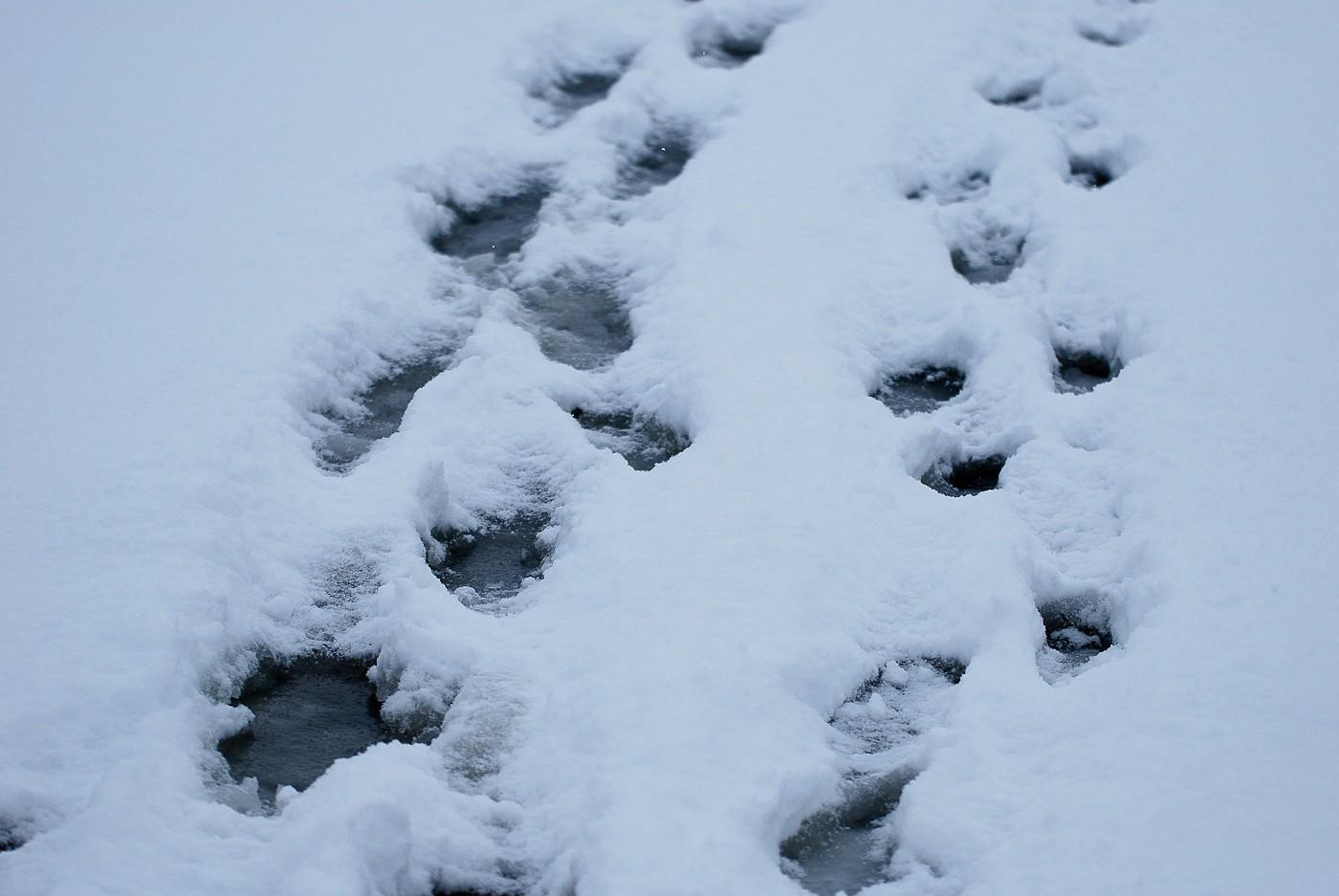 Синоптики: в середине недели ожидается мороз до -17 градусов