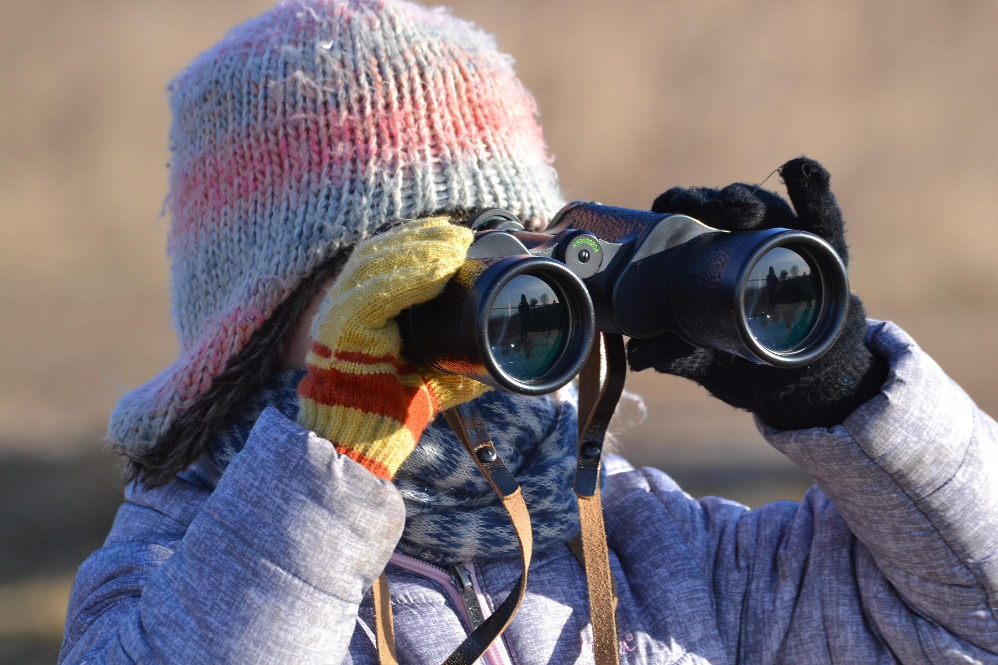 В рамках Дня птиц наблюдали за пернатыми