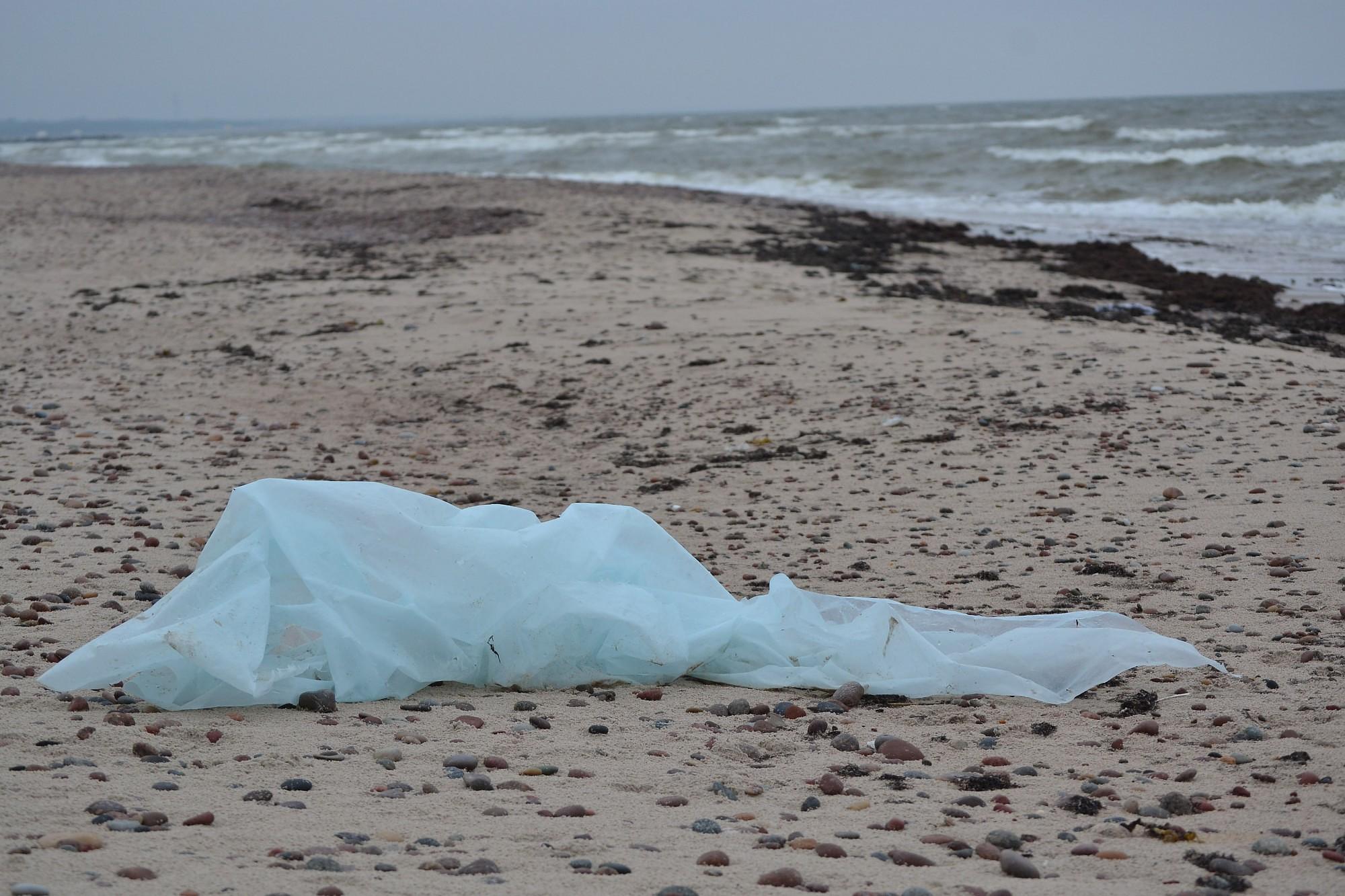 Приглашают участников толоки по уборке побережья
