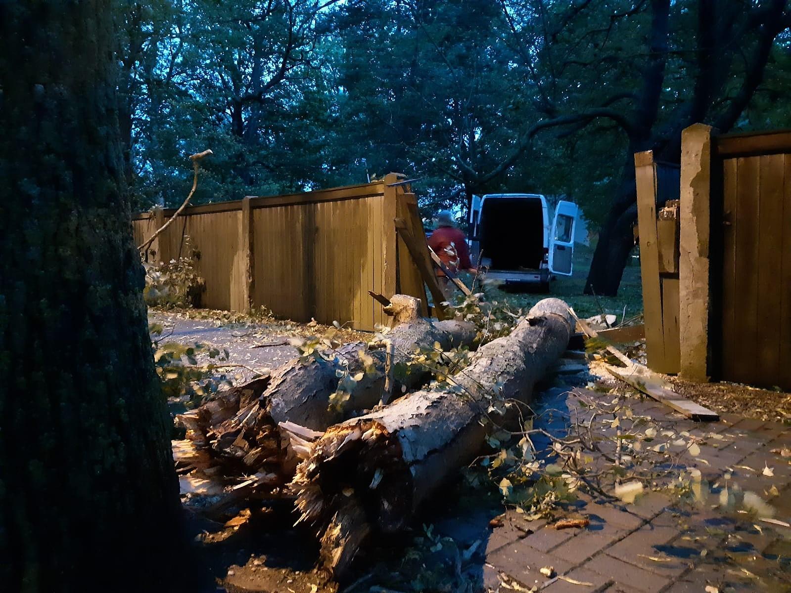 Ветер сломал полтора десятка деревьев; повреждены инфраструктура и имущество