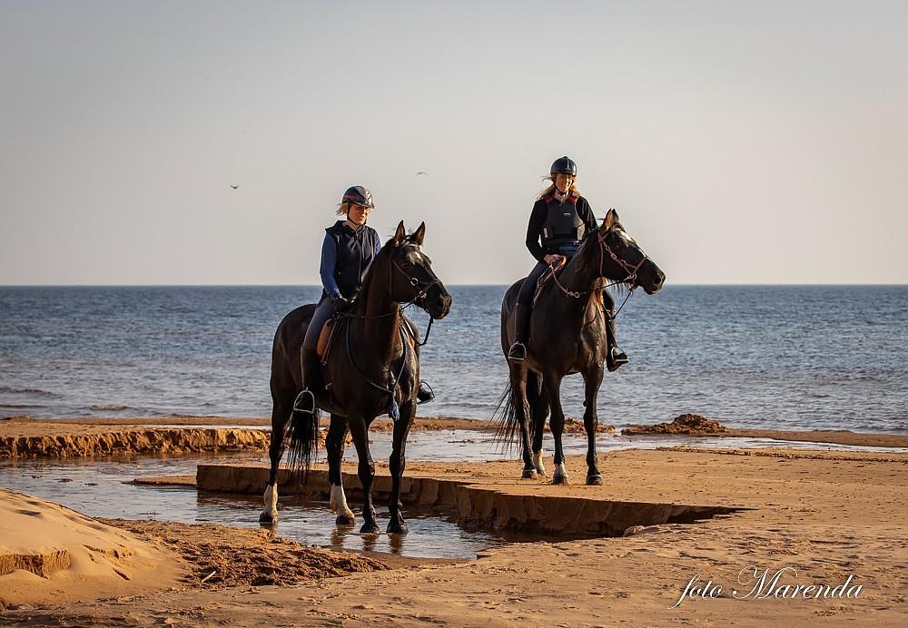 На лошадях вокруг Латвии