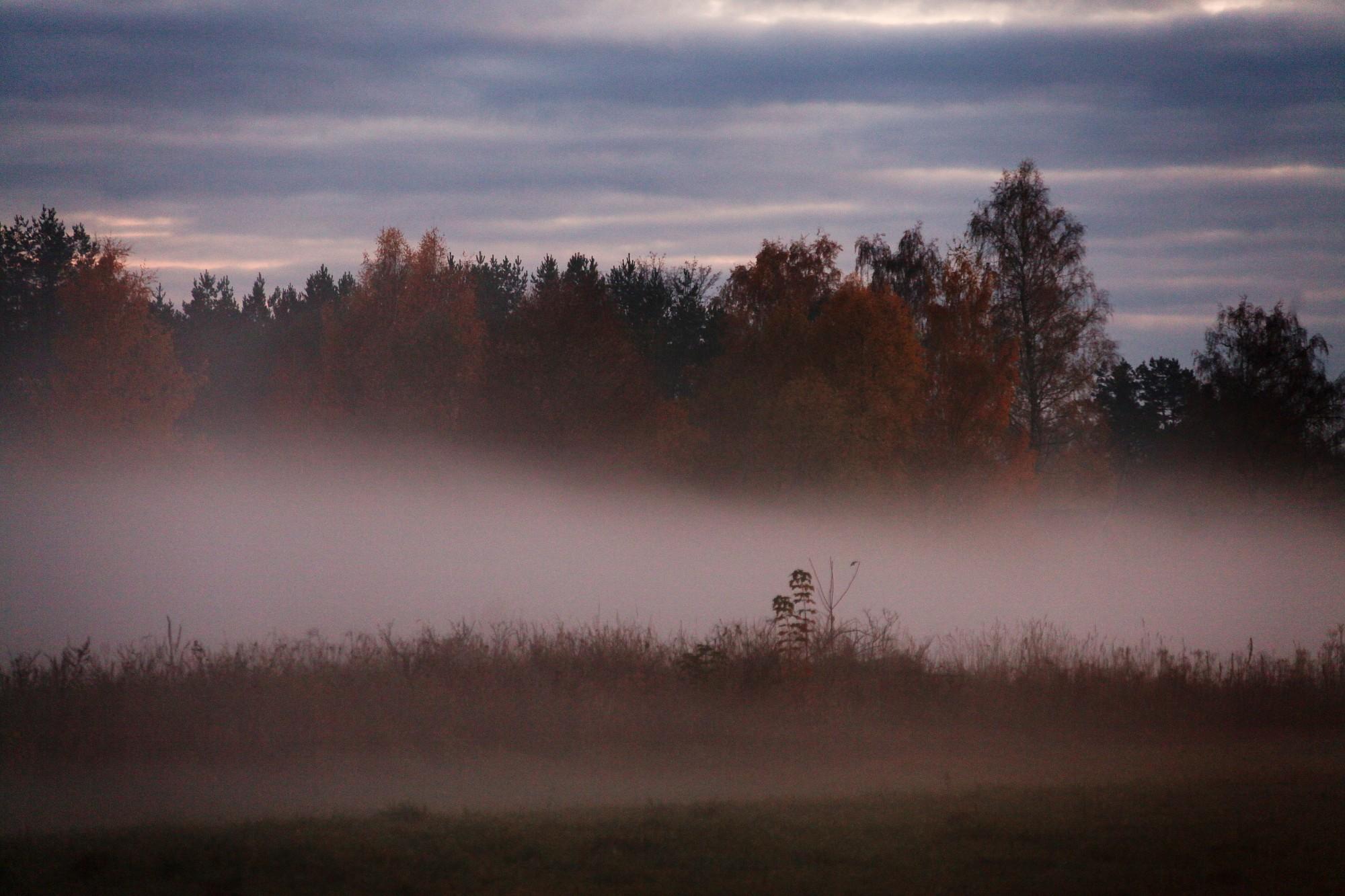 Аномальная ночь: в трех местах Латвии побиты рекорды холода