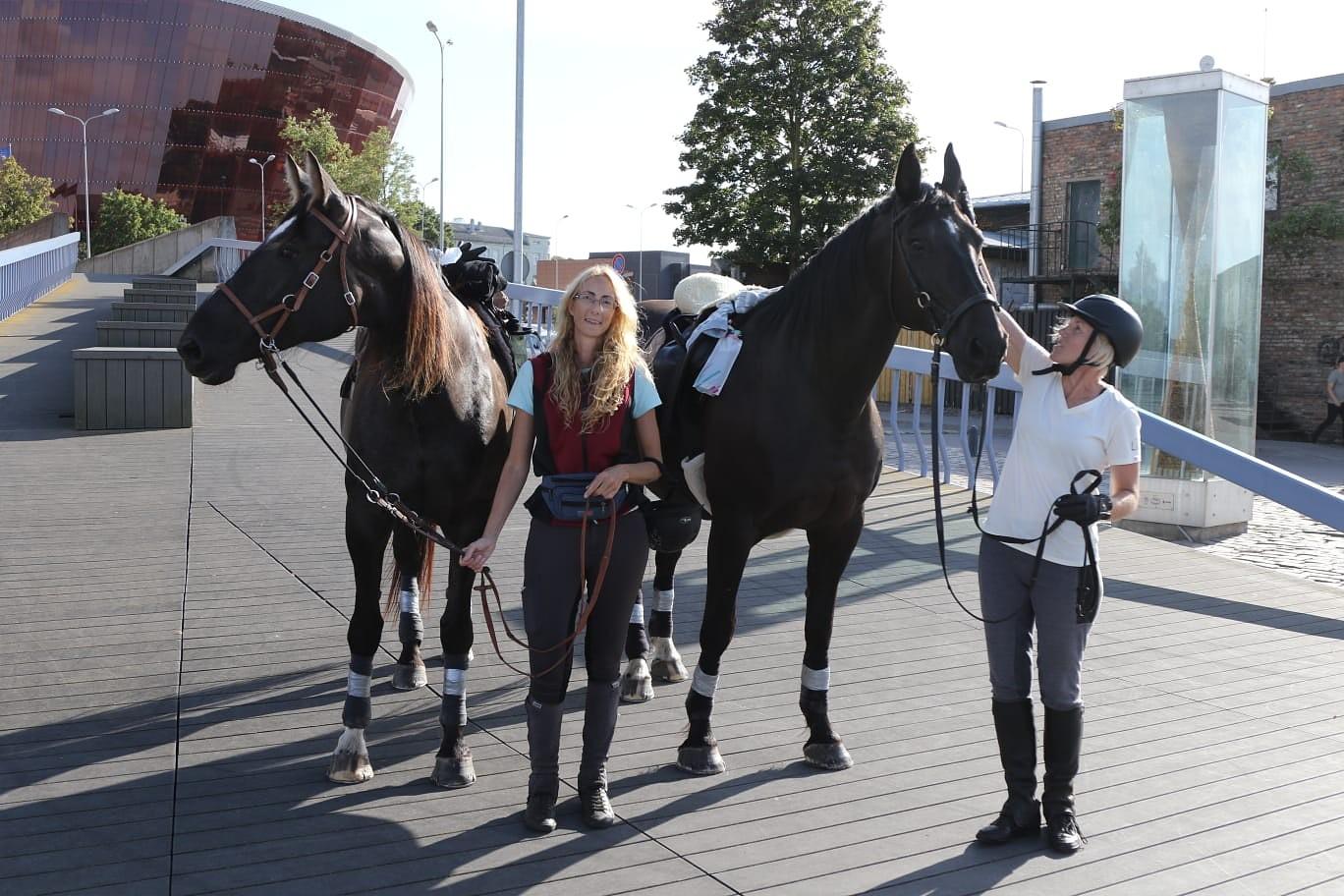 Верхом на лошади – вокруг Латвии