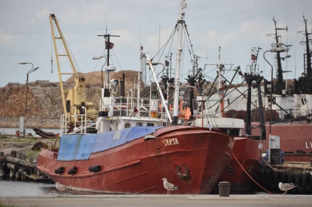 Квоты на вылов трески на востоке Балтийского моря на следующий год уменьшены на 92%