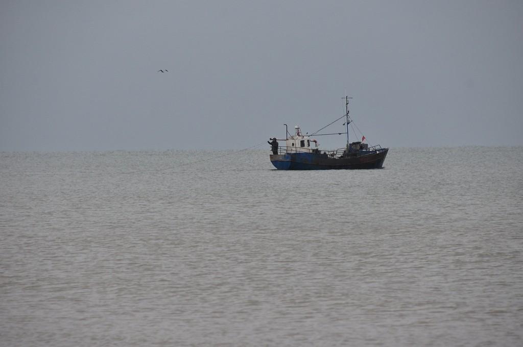 Латвия не поддерживает полный запрет на вылов трески в восточной части Балтийского моря
