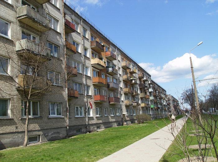 Предлагают обсудить вырубку деревьев на ул.Клайпедас, 88, 90 и 92