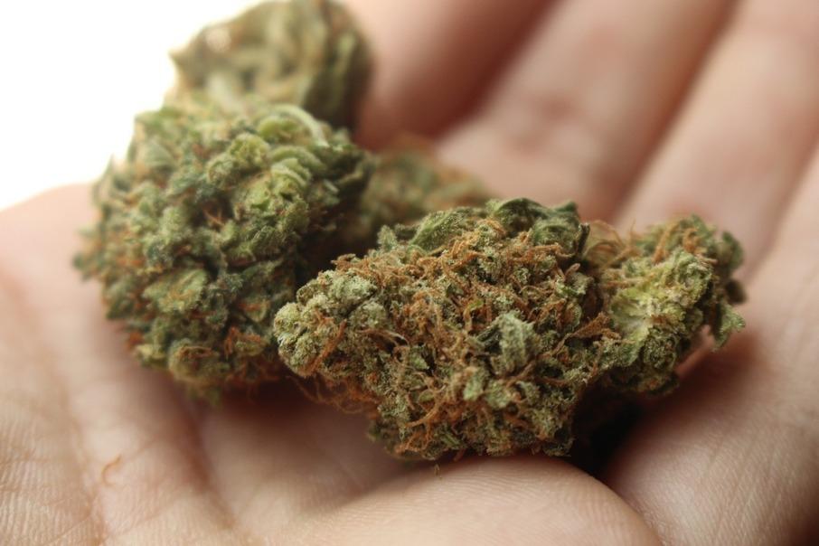 Государственная полиция на основе подозрений за приобретение и хранение наркотических веществ в больших объемах задержала лиепайчанина