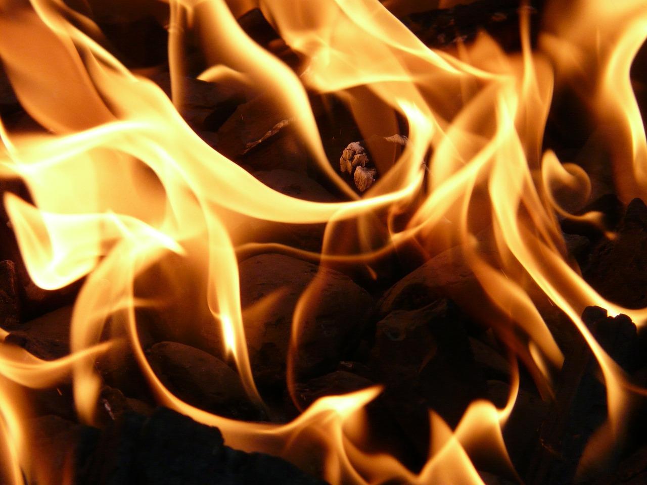 В Калвенской волости загорелось дерево