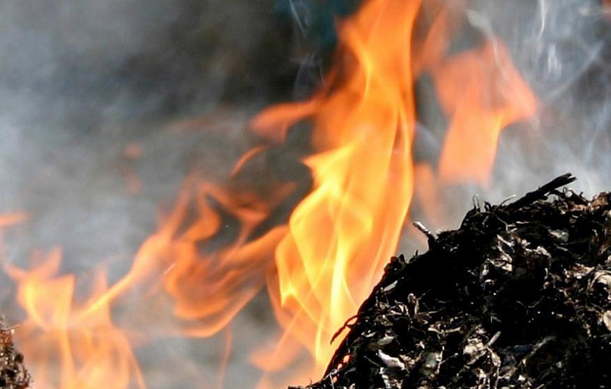 На улице Круму горели старник и мусор