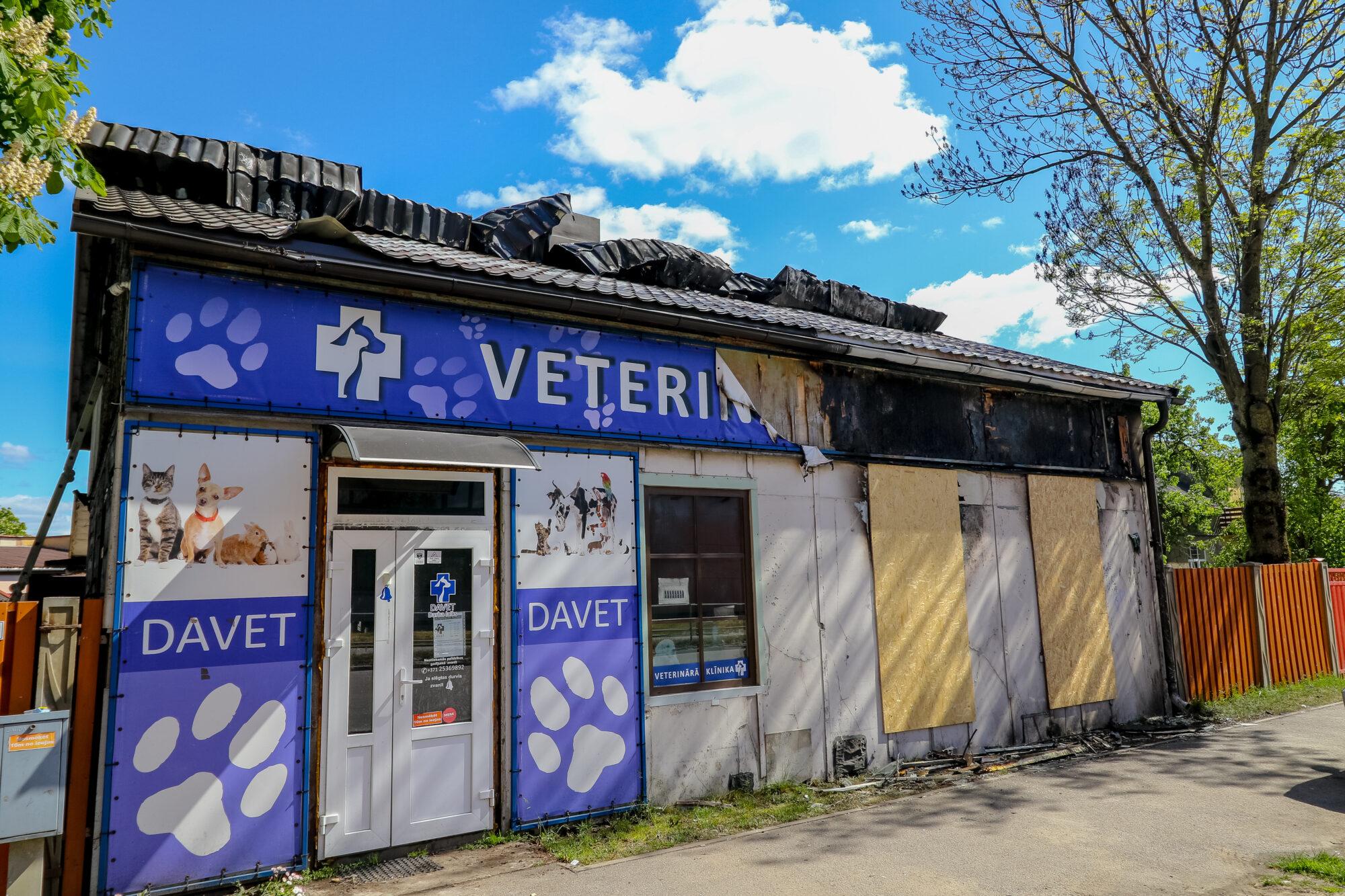 Огонь уничтожил ветеринарную клинику «DAVET»