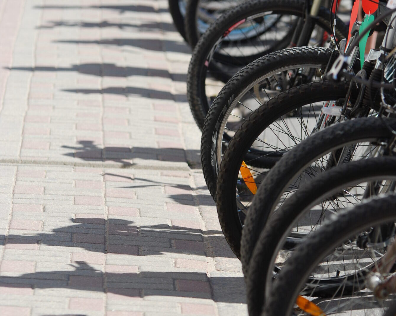 В Гробине открыли уникальную велотрассу