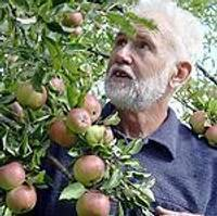 День яблок в «Спроги»