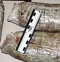Наши пограничники задержали контрабандистов наркотиков