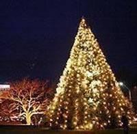 Лиепайчане колокольчиками разбудили большую елку