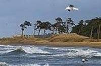 Ветер на морском побережье может достичь ураганной силы