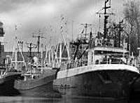 Рыбаки выходят в море