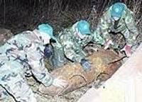 Обезврежены найденные в Рождество бомбы