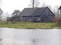 Дожди затопили поля, сады и лесопосадки