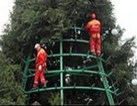 Демонтируют елку