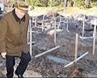 Строительство в сосновом лесу возле моря вызывает подозрения