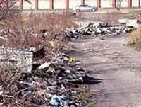Сгребаем, сметаем, собираем… собственный мусор