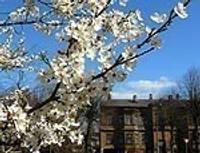Весной спешат насладиться и маленькие, и большие лиепайчане