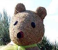 По краю будут возить Медведя счастья